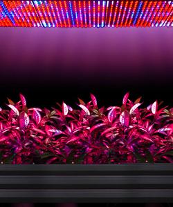 Светодиодные led панели для растений(фитопанели)