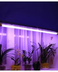 Люминесцентные лампы для растений(фитолампы)